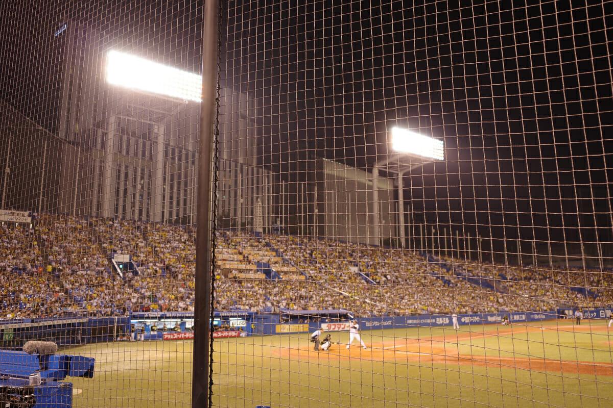 2019年の野球観戦